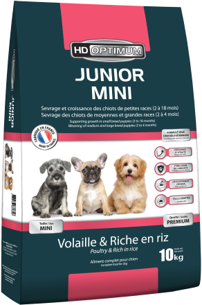 Junior Mini